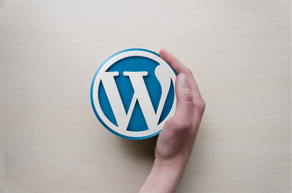 WordPress: an introduction
